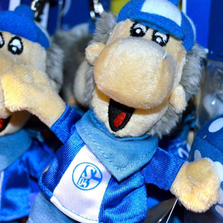 FC Schalke Erwin fanworld berlin